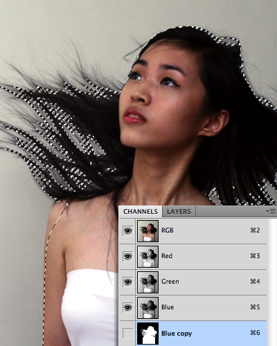 quick selection tool in photoshop 17 Photoshop中的5个快速选择工具