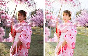 和服樱花后期教程