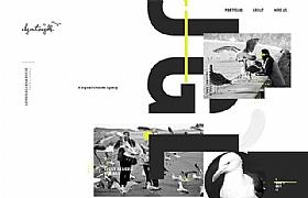 elegant seagulls设计创作酷站欣赏